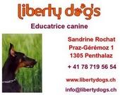 Liberty Dogs